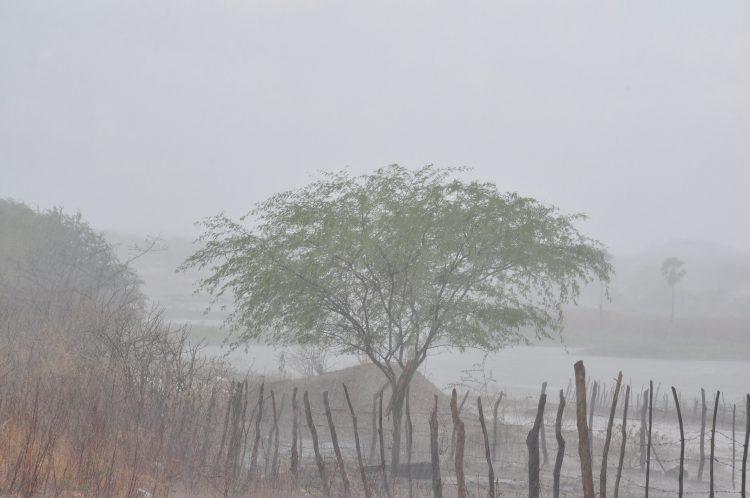 Emparn registra chuvas 66,6% acima da média para o mês de janeiro no RN