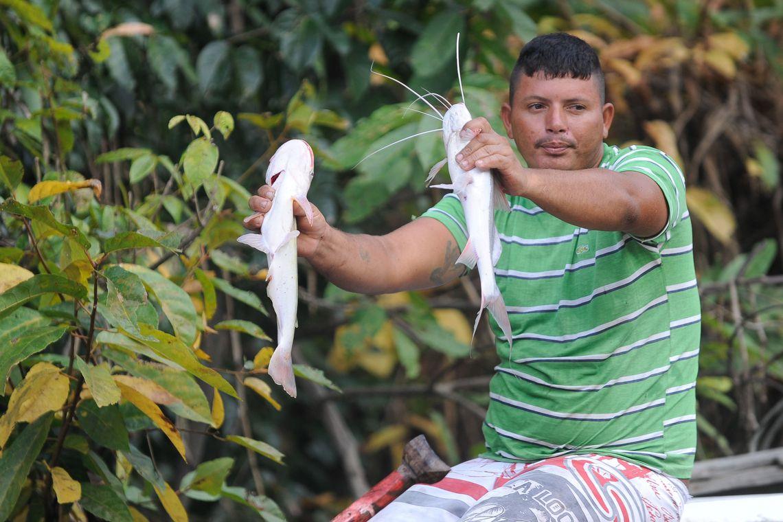 911184 pesca artesanal
