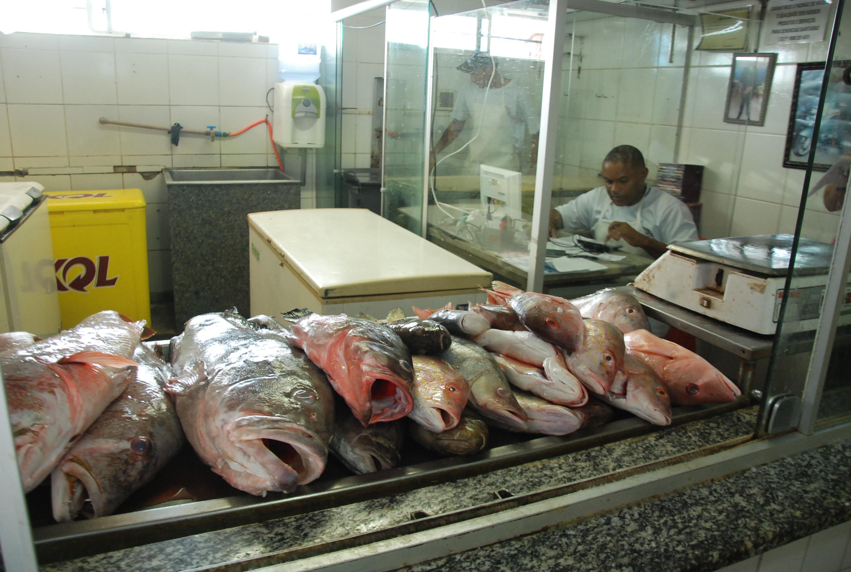 Peixes da Semana Santa 94