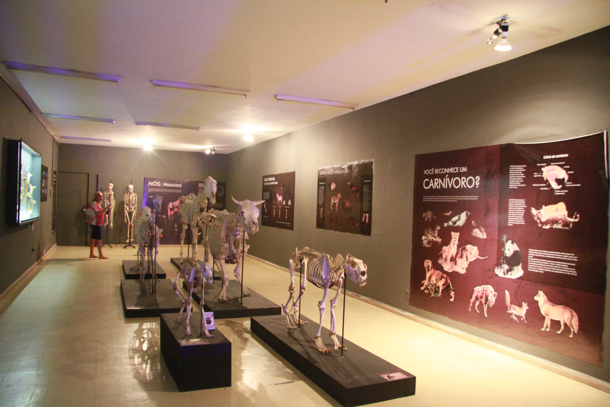 Museu Câmara Cascudo 62