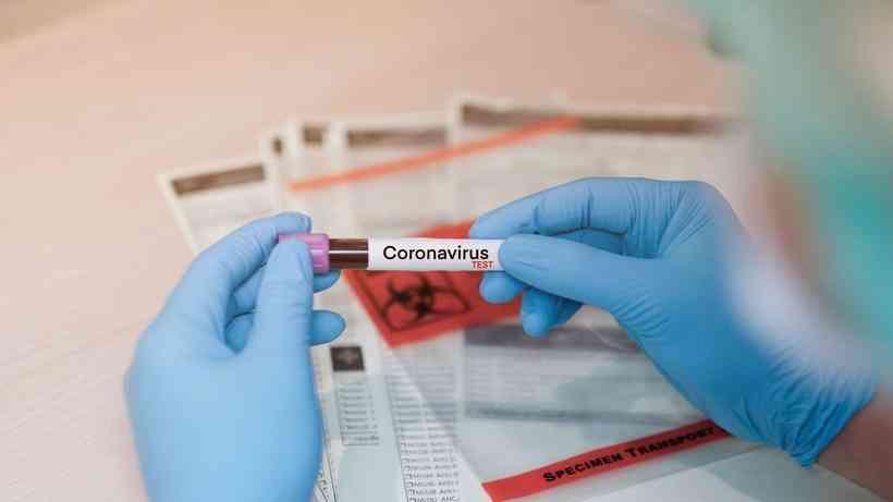 coronavírus 6