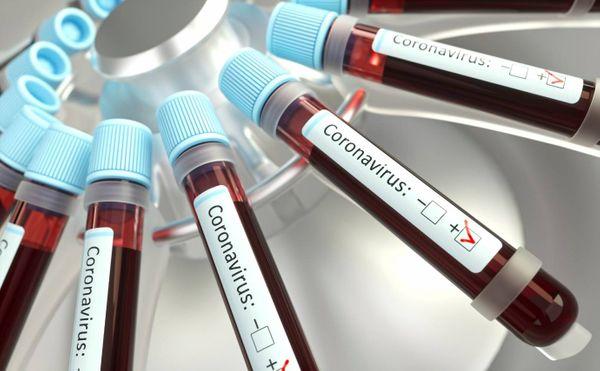 Coronavírus 7