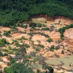 Para 46%, gestão de bolsonaro em combate ao desmantamento na amazônia é ruim ou péssima