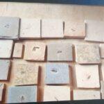 Pf abre operação santana raptor contra tráfico de fósseis no ceará e prende dois em flagrante