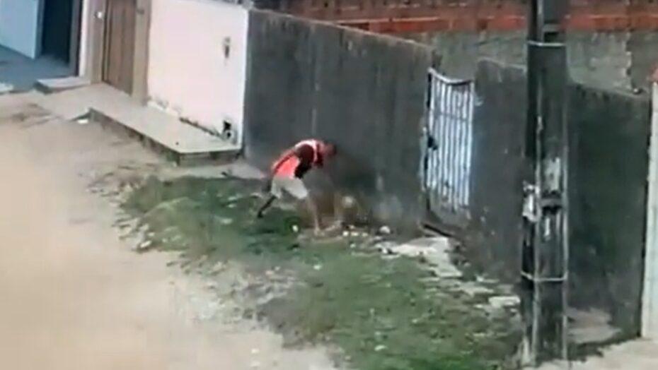 Homem mata cachorro a facadas em natal e pode ser 1° preso com nova lei de maus-tratos