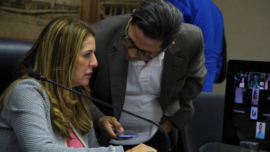 Vereadores encerram votação do orçamento de natal para 2021
