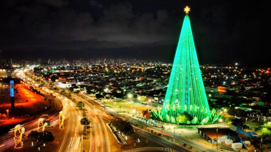 Árvore de mirassol em natal é acessa sem presença do público; veja vÍdeo
