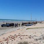 Porto do mangue reaparece como novo projeto econômico para o rn