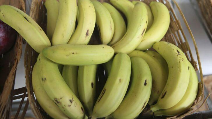 Preço da maçã, banana e melancia sobe forte em dezembro, aponta conab