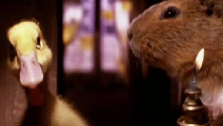 Como o grilo falante, em 'pinóquio', veja outras produções com animais que falam