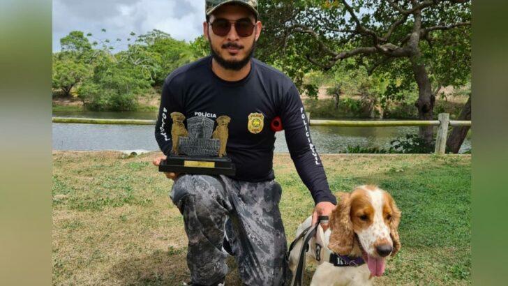 Cão farejador treinado por policial civil é campeão em seminário de detecção