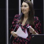 Relatora da pec da imunidade retira de parecer item que alterava lei da ficha limpa
