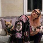 Cachorros de lady gaga são roubados e cantora oferece recompensa de us$ 500 mil para recuperá-los