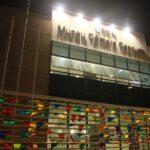 Museu câmara cascudo promove visita virtual ao acervo de paleontologia