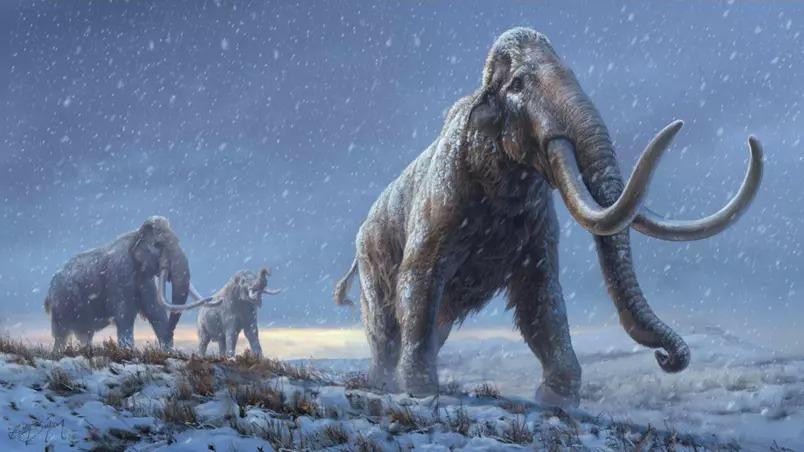 Cientistas sequenciam dna mais antigo do mundo, com mais de 1 milhão de anos