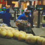 Citri&co se associa à agrícola famosa para expandir seu portfólio e atuação no mercado global de frutas frescas