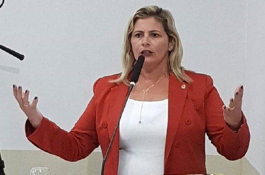 Prefeitura de parnamirim tenta que câmara vote lei já existente; entenda