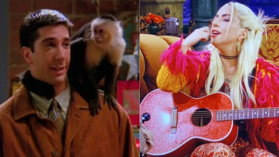 De macaco odiado a gaga com phoebe: 5 cenas imperdíveis da reunião de friends