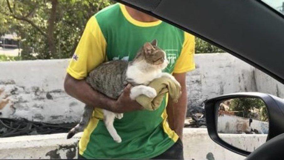 """Homem pede dinheiro em semáforo em troca de carinho em gato: """"formando um puta trânsito"""""""