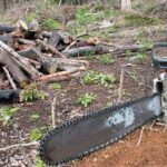 Câmara aprova texto-base de projeto que flexibiliza licenciamento ambiental
