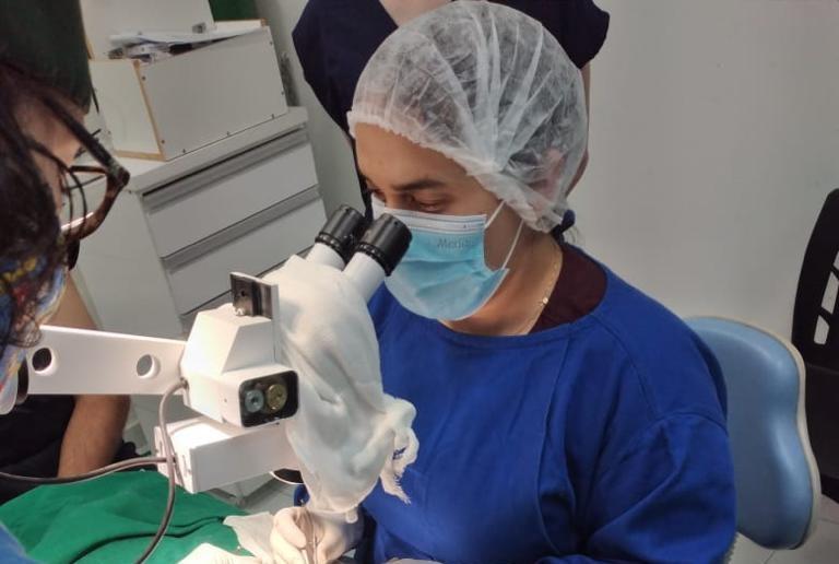 Médica-veterinária realiza microcirurgia pioneira no rio grande do norte; saiba mais
