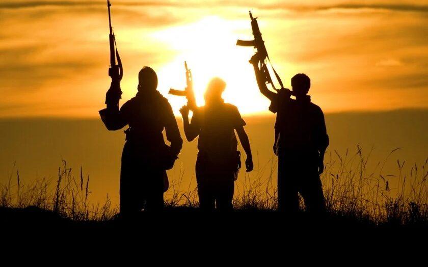 Polícia federal investiga promoção ao terrorismo no brasil; um é preso