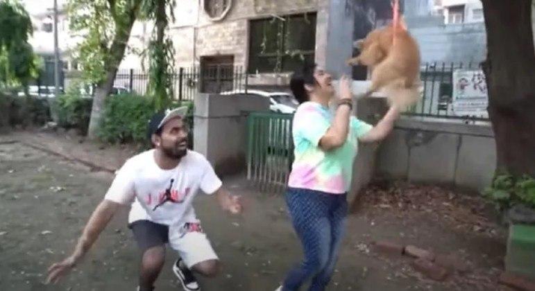 Youtuber é preso após fazer cachorro voar amarrado a balões