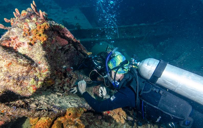 Expedições para remoção do coral-sol retiram mais de 3 mil colônias no litoral potiguar