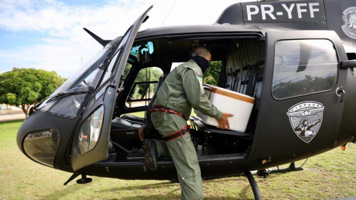 Com ajuda de helicóptero, governo do rn distribui vacinas 3h após recebimento