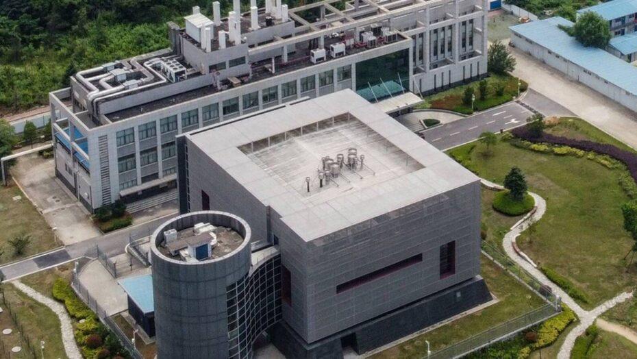 'não tenho nada a temer': o desabafo da virologista chinesa no centro da teoria de que a covid vazou de laboratório
