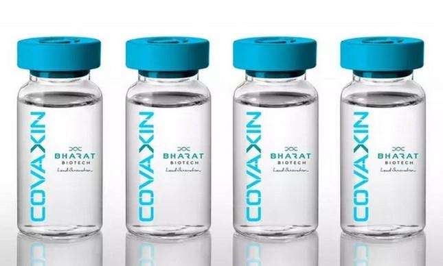 x a vacina contra a covid desenvolvida por institutos indianos foi batizada de covaxin jpg pagespeed ic lxhfam